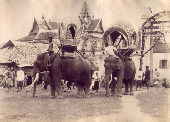 11a elephants Norodom